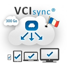 VCIsync - 300 Go - Solution...